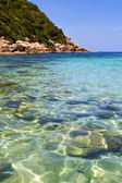 Asia in the bay kho tao    white  beach — Stockfoto