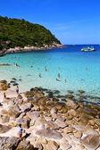 Asia in the  kho tao bay isle white  beach    swim and south chi — Stock Photo