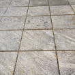 Brick in casorate    pavement of a curch and marble — Stock Photo #65441211
