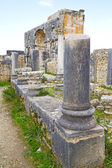 Volubilis in morocco africa the site — Stock Photo