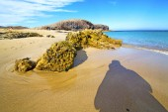 White coast lanzarote  in spain   beach   summer — Stock Photo