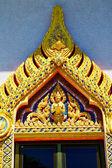 Kho samui bangkok in thailand incision of the   — Stock Photo