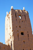 Brown   in  africa morocco  near the tower — Stock Photo