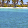 Isla contoy   in mexico froath and blue  foam  the — Stock Photo #75140781