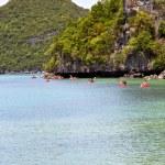 Coastline of a green lagoon and tree  kayak  phangan  bay — Stock Photo #78524656