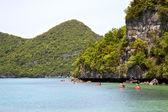 Coastline of a green lagoon and tree  south china kayak — Stock Photo