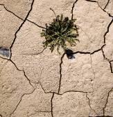 Bruin droog zand in de sahara woestijn Marokko Afrika erosie en abstr — Stockfoto