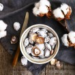 Decoration with salt apricot pits and cotton flowers — Stock Photo #67780775