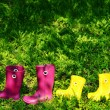 Rubber boots for woman and kid in green summer grass — Stock Photo #73048039