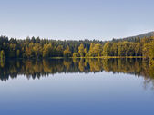 Autumn (fall) landscape — Stok fotoğraf
