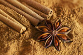 Cinnamon sticks, ground cinnamon and  star anise — Stockfoto