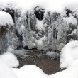 Frozen water, snow and small stream — Stock Photo #61422539