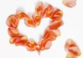 Rose petals (heart shape) — Foto de Stock
