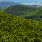 Hilly landscape. Tuscany, Italy — Stock Photo #76291827