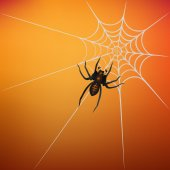 Spider with web on orange background — Stock Vector