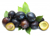 Fresh purple plums — Stock Photo