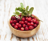 Cranberries — Stockfoto