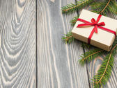 Christmas trees with  gift box — Foto Stock
