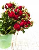 Red roses in bucket — Stockfoto