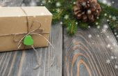 Christmas trees with  gift box — Stock Photo