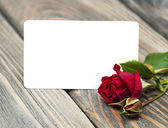 Red rose and greeting card — Photo