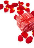 Gift box and roses petals — Stock Photo