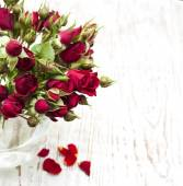 Rote rosen in vase — Stockfoto