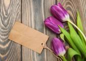 Tulipanes con una tarjeta de — Foto de Stock