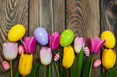 Colorful tulips and easter eggs  — Stock Photo