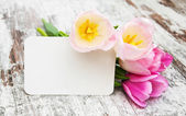Tulips with a card — Stock Photo