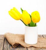 黄色着色されたチューリップの花 — ストック写真