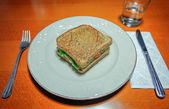 Sandwich ready to eat served in a plate — Stock Photo