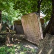 Tombstones on Old Jewish Cemetery in Prague — Stock Photo #66405247