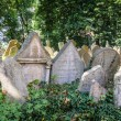 Tombstones on Old Jewish Cemetery in Prague — Stock Photo #66930533