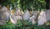 Tombstones on Old Jewish Cemetery in Prague — Photo