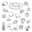 Fruits and berries, sketches of icons vector set — Stock Vector #67637413
