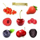 Sweet berries, vector illustration set of high quality — Stock Vector