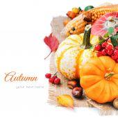 Autumn still-life with pumpkins — Stock Photo