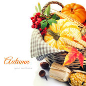 Seasonal basket with pumpkins and corn — Stock Photo