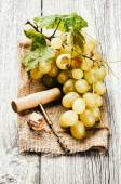 Bunch of grape in rustic setting — Stock Photo