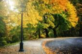 Curvy road in autumn park — Stock Photo