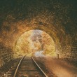 Old abandoned railway tunnel — Stock Photo #52940907