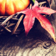 Autumn decoration with pumpkin and colorful leaves — Stock Photo #53804353
