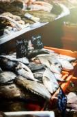 Fresh sea bream at fish market — Stock Photo