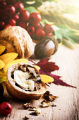 Autumn still-life with walnuts — Stock Photo
