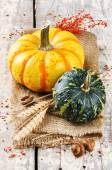 Autumn with pumpkins in rustic setting — Stock Photo