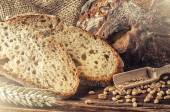Traditionele vers gebakken brood — Stockfoto