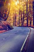 Autumn landscape with curvy road — Stock Photo