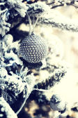 Christmas ball on snow covered fir tree — Stock Photo
