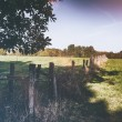 Countryside landscape with old wooden fence — Stock Photo #55564937